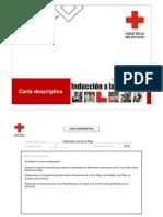 Carta descriptiva IACR 09