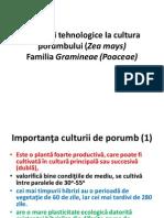 Porumbul Itinerarii tehnologice la cultura porumbului (Zea mays) Familia Gramineae (Poaceae)