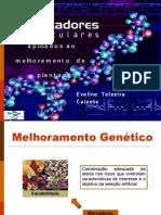Minicurso5_MarcadoresMoleculares