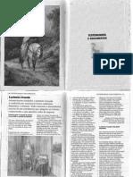 Cruzada Documentos