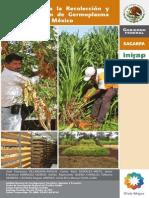 Manual Para La Recolección y Conservación de Germoplasma Forrajero