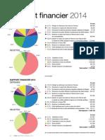 Rapport Financier FIDH 2014