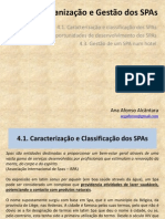 Organização e Gestão Dos SPAs