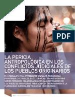 Moreira Manuel Alberto Jesús La Pericia Antropológica en Los Conflictos Judiciales de Los Pueblos Originarios