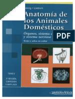 Konig - Anatomia
