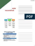 ADN-recombinant.pdf