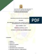Sem.constitución Gestion Institucionalidad y Sostenib de Las Org-VICTOR NOMBRETO