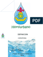 Hidroponia Primero