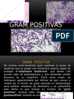 Exposicion Gram Positivas