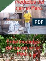 enfermedadesdelcacao-101012224824-phpapp02.pdf