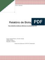 Relatório de Biologia - Taxa Metabólica de Peixes e Lâminas