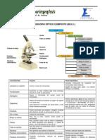 MicroscÓpio Óptico Composto (m.o.c.)