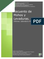 239216717 Laboratorio N 8 Mohos y Levaduras