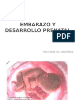 Embarazo y Desarrollo Prenatal