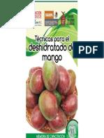 Tecnicas Para El Deshidratado de Mango (1)