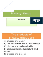 Photosynthesis Review Ppt