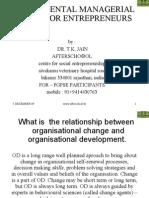Fundamental Managerial Skills for Entrepreneurs