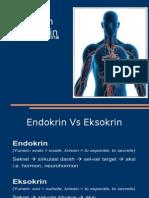 sistemendokrin-131003012841-phpapp02