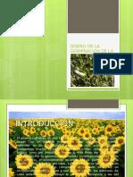 Diseño estadistico para la germinacion de semillas