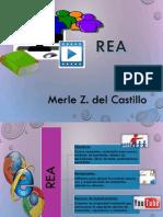 MerleZdelCastillo_Generar Evidencias