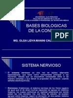 Bases Bases Biologicas de La Conducta IIBiologicas de La Conducta II