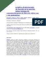 Análisis Descriptivo Al Microscopio Electrónico de Barrido de La Interfaz Adhesiva Dentina