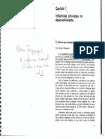 RAPPAPORT Influencias Pre-natais No Desenvolvimento