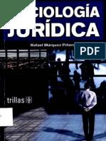 Sociologia Juridica - Marquez Pinero Rafael