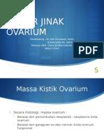 tumor jinak ovarium williams