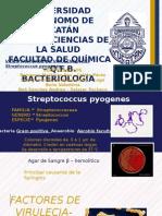 Factores de Virulencia de Streptococcus Pyogenes