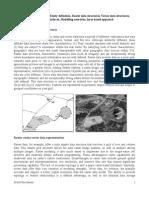 3 Spatial Data Modelling