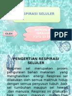 RESPIRASI SELULER.pptx