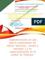 diapst.. DE NECTARES 2016.pptx