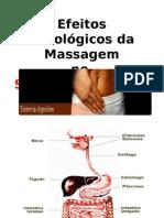 Efeitos Fisiológicos Da Massagem Sistema Digestório