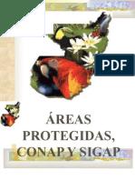 Areas Protegidas,Conap y Sigap.