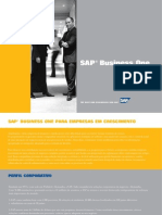 Folder Completo SAP Business One