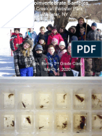 Mrs. Burns' Class Winter Macroinvertebrate Samples