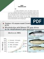 Makalah Metabolisme Pada Ikan.