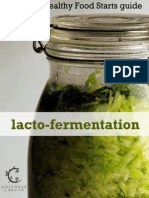 Lacto Fermentation eBook