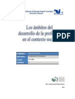 1.2. Los Ambitos Del Desarrollo de La Profesion en El Contexto Social