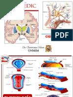 Ciencias Basicas Completo Neurologia Psiquiatria