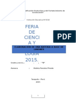 Proyecto Fencyt 2015 1ro B