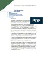 Implementacion de Un Sistema de Calidad en La Pequeña y Mediana Empresa