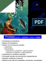 Protista (Protos =