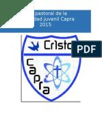 Planeación Capra 2015