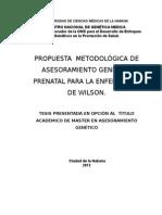 Propuesta de metodología de asesoramiento genético