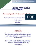 Tutorial Guia de Buscas Avancado Especifico Modulo 1 Quimica Atualizacao1 10072015