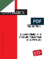 Infoadex Resumen Est Inv 2013