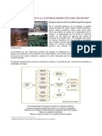 Fomento a la actividad productiva del traspatio.pdf