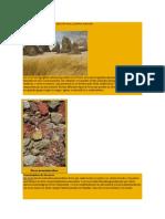 Tipos de Rocas y Piedras Naturales